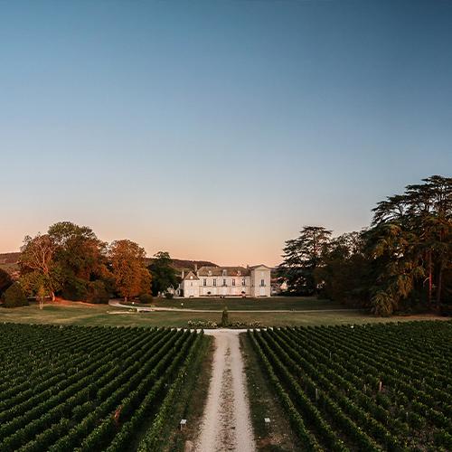 Burgundy 2019's greatest value gems