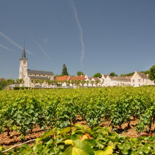 Top value 1er Cru Red Burgundy in its prime