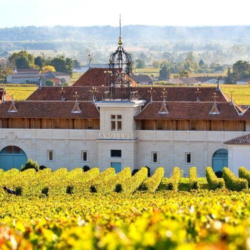 Bordeaux 2020: Chateau Angelus and Chateau Pavie