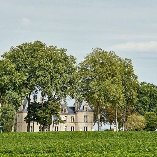 Bordeaux 2020: Pichon Comtesse