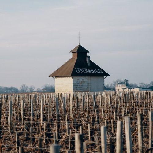 Bordeaux 2020: Lynch Bages
